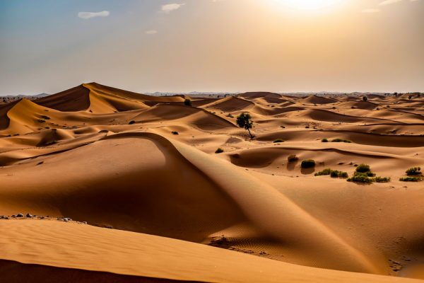 Sharqiyah Sands, North Governorate